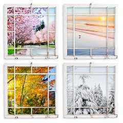 Image of the Four Seasons Through Picture Frames